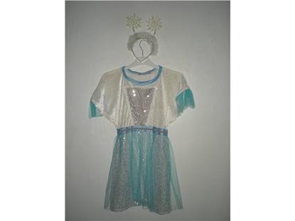 Billede af Isprinsessen. Kostume til kørestolsbruger.