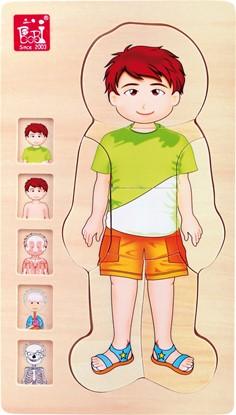 Billede af Puslespil. Drenge anatomi