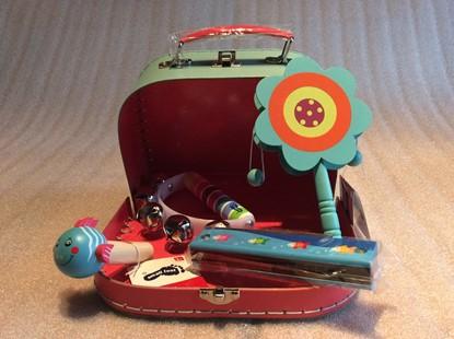 Billede af Instrumenter i kuffert