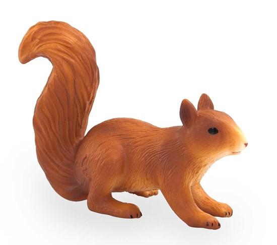 Billede af Egern - Animal Planet