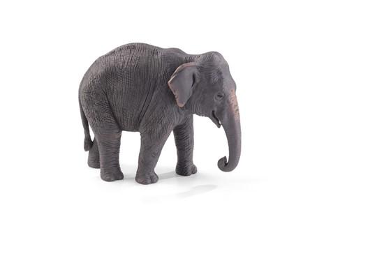 Billede af Animal Planet - Asiatisk elefant