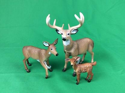 Billede af Animal planets - Hvidhalet hjortefamilie