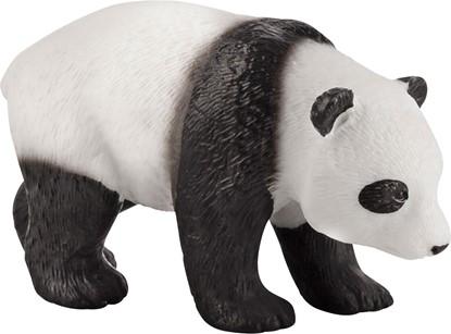 Billede af Animal Planet - Panda unge